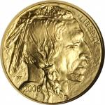 2008-W Half-Ounce Gold Buffalo. Burnished. Early Releases. MS-70 (NGC).