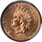 1877 Indian Cent. MS-64 RB (PCGS).