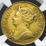 GREAT BRITAIN Anne アン(1702~14) Guinea 1713 NGC-VF30 -VF