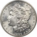 1899/99-S Morgan Silver Dollar. VAM-7. Top 100 Variety. Repunched Date. MS-67 (NGC).