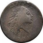 1793 Flowing Hair Cent. Chain Reverse. S-1. Rarity-4. AMERI. Fine-12 (PCGS).