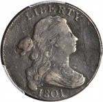 1801 Draped Bust Cent. S-222. Rarity-1. Fine Details--Damage (PCGS).