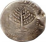 1652 Pine Tree Shilling. Large Planchet. Noe-13, Salmon 13-X, W-780. Rarity-6. Without Pellets at Tr
