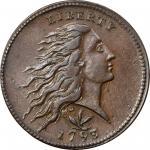 1793 Flowing Hair Cent. Wreath Reverse. S-8. Rarity-3. Vine and Bars Edge. AU Details--Rim Damage (P