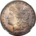 1880 Morgan Silver Dollar. Proof-67 (NGC).