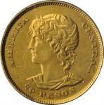 EL SALVADOR. 20 Pesos, 1892-C.A.M. Central American (San Salvador) Mint. NCS EF Details--Mount Remov