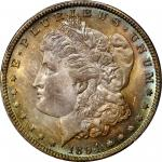 1894-O Morgan Silver Dollar. MS-64+ (PCGS). CAC.