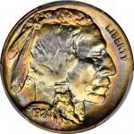 1924-D Buffalo Nickel. MS-66 (PCGS).