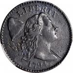 1794 Liberty Cap Cent. S-48. Rarity-5. Starred Reverse. EF Details--Damage (PCGS).