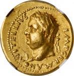 VITELLIUS, A.D. 69. AV Aureus (7.39 gms), Uncertain mint in Spain, possibly Tarraco. NGC Ch VF, Stri