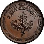 Undated (1876/77) American Numismatic and Archaeological Society Membership Medal. Bronze. 42 mm. Mi
