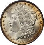 1891 Morgan Silver Dollar. MS-64+ (PCGS).