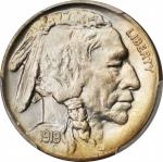 1919 Buffalo Nickel. MS-67 (PCGS).