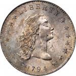 1794年飘逸长发银币 PCGS MS 64