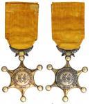 法属印度支那彰美奖章,保存良好