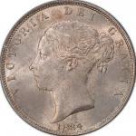 英国 (Great Britain) ヴィクトリア女王像 ヤングヘッド 1/2クラウン銀貨 1884 KM756 / Victoria Young Head1/2 Crown Silver