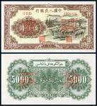 """1951年第一版人民币伍仟圆""""牧羊""""正、反单面样票各一枚/JJJD64×2"""