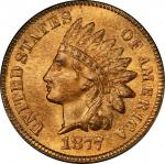 1877 Indian Cent. MS-65 RD (PCGS). CAC.