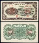 """1951年第一版人民币伍仟圆""""牧羊""""正、反单面样票各一枚"""