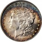1887 Morgan Silver Dollar. MS-65 (NGC). CAC--Gold Label. OH.