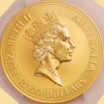 オーストラリア (Australia) カンガルー図 2500ドル(10オンス)金貨 1991年 KM151 / Red Kangaroo-Nugget 2500 Dollars (10oz) Gol