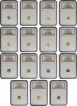 2007年中国熊猫金币发行25周年纪念金币1/25盎司一组25枚 NGC PF 69 CHINA. Gold 25th Anniversary Panda Coin Set, 2007