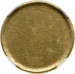 1991-2001伍角币胚 NGC Mint Error