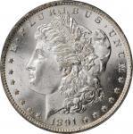 1891-CC Morgan Silver Dollar. VAM-3. Top 100 Variety. Spitting Eagle. MS-65 (PCGS).