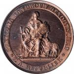 SOUTH AFRICA. Pretoria Agricultural Society Bronze Award Medal, ND (189X). PCGS SPECIMEN-64RB Red Br