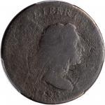 1793年自由帽1分 PCGS AG 1793 Liberty Cap Cent