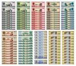 外汇兑换券发行四十周年加字版双连体连号十枚,相同券别冠字号尾号连号,全新
