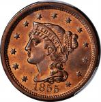 1855 Braided Hair Cent. N-4. Rarity-1. Upright 5s. MS-66+ RB (PCGS). CAC.