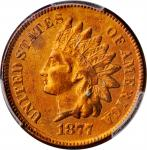 1877 Indian Cent. EF Details--Harshly Cleaned (PCGS).