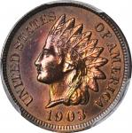 1903 Indian Cent. Unc Details--Cleaned (PCGS).